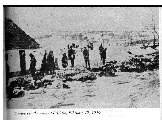 CADAVERS IN THE SNOW IN FELSHTIN, FEBRUARY 17, 1919., From Pogromchik, The Assassination of Simon Petlura, Saul S. Friedman, Hart Publishing Company, Inc., New York, New York 10012, 1976